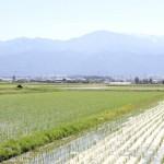 信州大町に移住をサポートするの為の分譲地を開発しました。